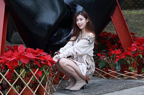 Фотография Шатенка Поза молодая женщина Азиаты сидя Взгляд 600x395 шатенки позирует девушка Девушки молодые женщины азиатки азиатка Сидит сидящие смотрит смотрят