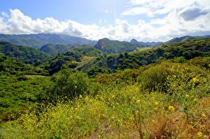Фото Пейзаж Горы Калифорния Кустов Трава Малибу Природа