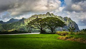 Обои Пейзаж Горы Траве Облака Гавайи Oahu Природа