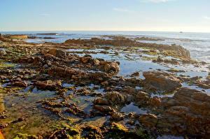 Картинка Берег Калифорния Малибу Природа