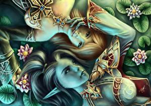 Картинки Любовь Эльфы L2 Лицо Волосы Фэнтези Девушки Игры