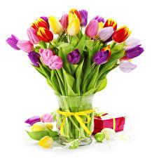 Фото Тюльпаны Букет Ваза Цветы