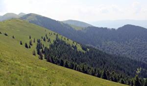 Обои Горы Украина Пейзаж Закарпатье Негровець