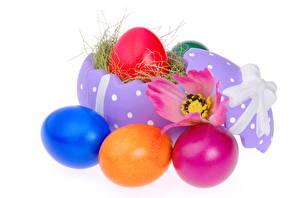Обои Яйца Еда