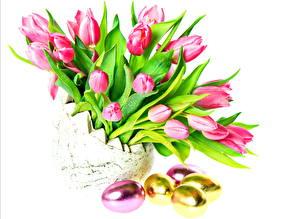 Фото Тюльпаны Букеты Пасха Яйцо Цветы