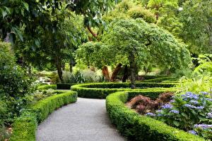 Обои Парки Новая Зеландия Ландшафт Кусты Дизайн Christchurch Природа фото