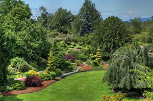 Обои Сады Канада Ландшафт Ванкувер Дизайн Queen Elizabeth Природа фото