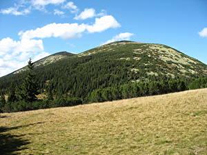 Обои Горы Украина Пейзаж Карпаты Сивуля и Лопушна