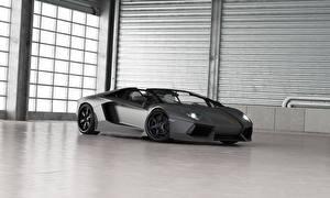Фото Lamborghini Люксовые Серый 2013 Aventador LP700-4 roadster Автомобили