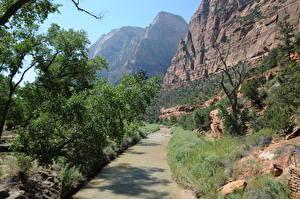Фотографии Парки США Зайон национальнай парк Утес Utah