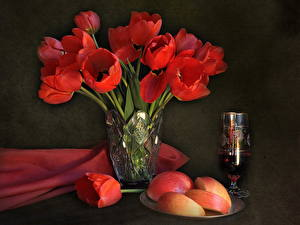 Фотографии Тюльпан Красный Вазе Цветы