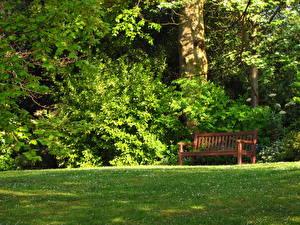 Картинка Сады Англия Великобритания Трава Скамья Лондоне Hill Garden Природа