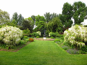 Фото Сады Англия Траве Лондон Газон Hill Garden Природа
