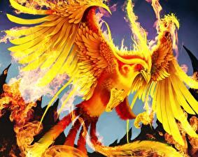 Фотография Волшебные животные Птицы Огонь Феникс Фэнтези