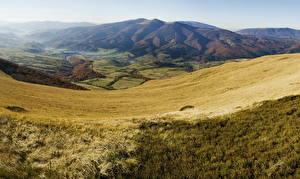 Фотография Горы Украина Пейзаж Карпаты Трава