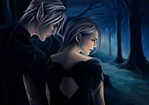 Картинка Dragon Age Мужчины Любовь Эльфы Игры Девушки
