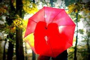 Фотография Любовь Влюбленные пары Красный Зонт