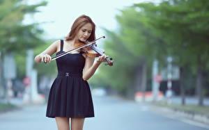 Фото Азиаты Скрипка Платье Шатенки девушка