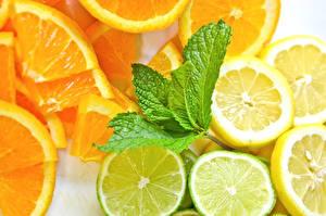 Картинка Фрукты Цитрусовые Лимоны Апельсин Лайм Пища