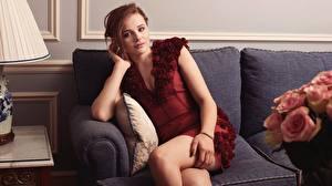 Картинка Chloe Grace Moretz Диван Сидящие Платье Знаменитости Девушки