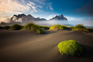 Фотографии Пейзаж Исландия Гора Пляж Мох Природа