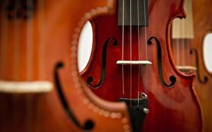 Картинки Музыкальные инструменты Скрипки Вблизи