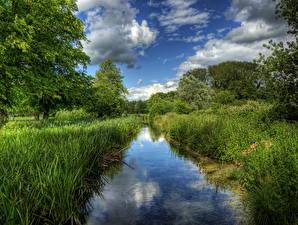 Фото Речка Англия Траве Itchen Winchester Природа