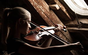 Картинки Скрипки молодые женщины