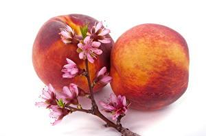 Обои Фрукты Персики На ветке Продукты питания