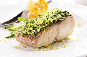 Фотография Морепродукты Рыба Пища