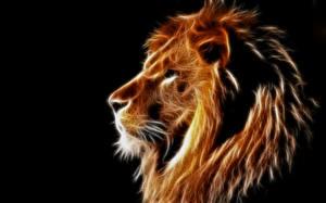 Картинка Большие кошки Лев Голова 3D_Графика