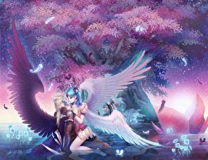 Фотографии Любовь Ангелы Крылья Объятие Фантастика Девушки Аниме