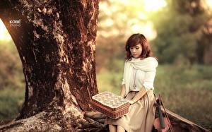 Фотография Азиаты Скрипка Ствол дерева Свитер Шатенки Девушки