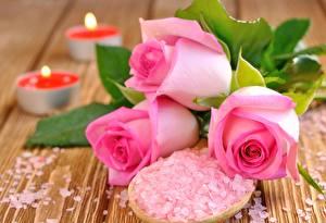 Обои Розовый Разное