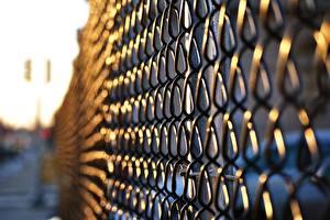 Фотография Крупным планом Забор