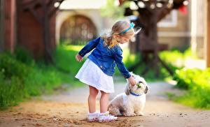 Фото Собаки Девочка Юбка Болоньез ребёнок