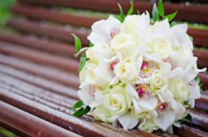 Картинки Букеты Розы Скамейка Белая цветок