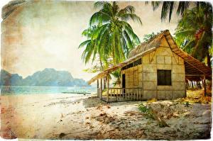Картинка Тропики Здания Пальм Бунгало Пляжи Природа