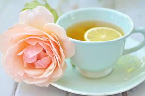 Картинки Розы Вблизи Лимоны Чай Чашка Блюдца цветок