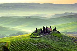 Обои Пейзаж Поля Италия Тоскана Сверху Природа фото