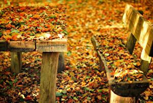 Картинки Времена года Осень Листья Скамейка Стол Природа
