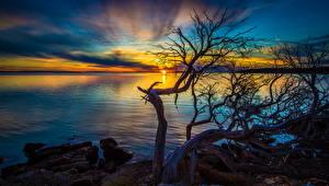 Фотографии Рассветы и закаты Австралия Побережье Port Lincoln South Природа