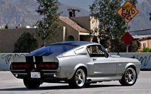Обои Ford Вид сзади Mustang GT500 Автомобили