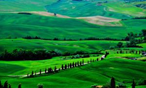 Обои Поля Италия Тоскана Сверху Природа фото