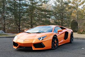 Фото Lamborghini Оранжевый Люксовые aventador lp700-4 Машины