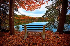 Картинка Реки Осень Скамья Дерева Листья Природа