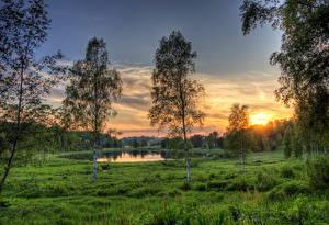 Обои Озеро Эстония Рассветы и закаты Трава Rouger Природа