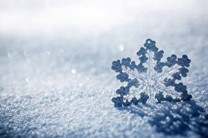 Обои Снег Природа