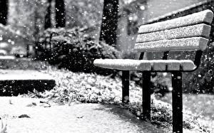 Фотография Зимние Скамья Снегу Природа