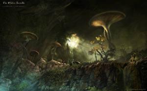 Обои The Elder Scrolls The Elder Scrolls Online Грибы природа компьютерная игра